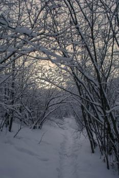 Уинка-зима